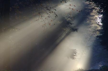 sunbeam-76825_1280